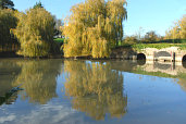 Westover House Pond, Calbourne Isle of Wight - Pictures courtesy of Wightphotobreaks.co.uk