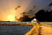 Sunset and Shed, Newtown, Isle of Wight - Pictures courtesy of Wightphotobreaks.co.uk